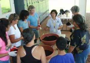 Garden Workshop Series