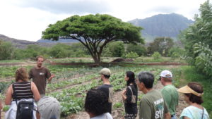 Kahaumana Organic Farming & Soil Health Workshop