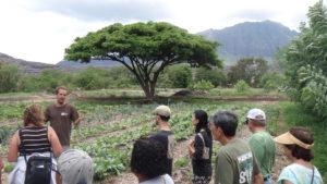 Kahaumana Organic Farming & Soil Health Workshop