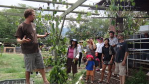Site Visit of Kahumana Organic Farm