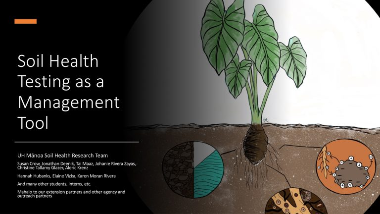 Integrating Practices and Setting up for a Soil Health Plan